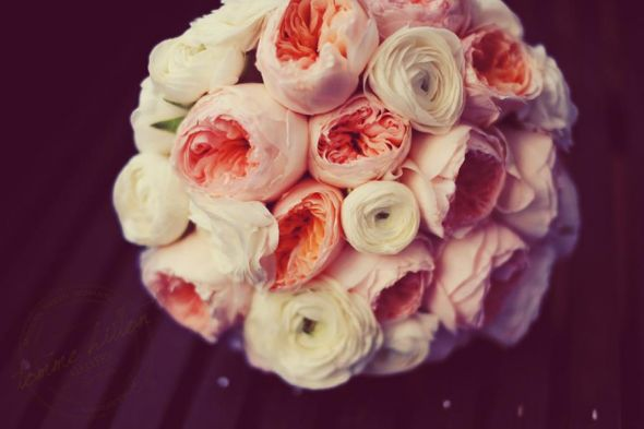 Garden roses ranunculus wedding pink ivory flowers 308681