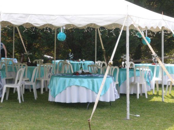 Tiffany Blue Damask wedding black blue white diy reception 199421