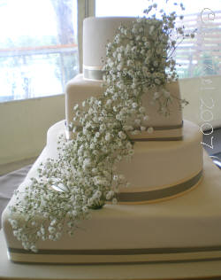 Baby's Breath Cake Inspiration :  wedding cake flowers inspiration Babys Breath Cake