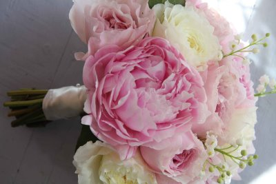 Pale pink or pure white flowers mightylinksfo